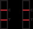 SARS-CoV2-Antigen-Schnelltest-Positiv